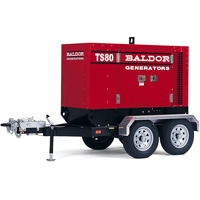 Baldor TS80T Generator