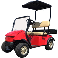 Golf Cart Eagle One