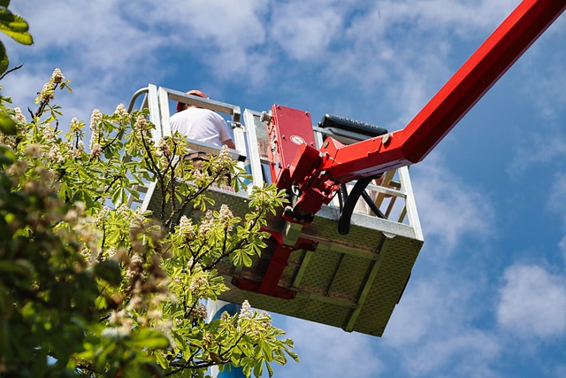 How Can I Select the Most Appropriate Aerial Lift for the Job?